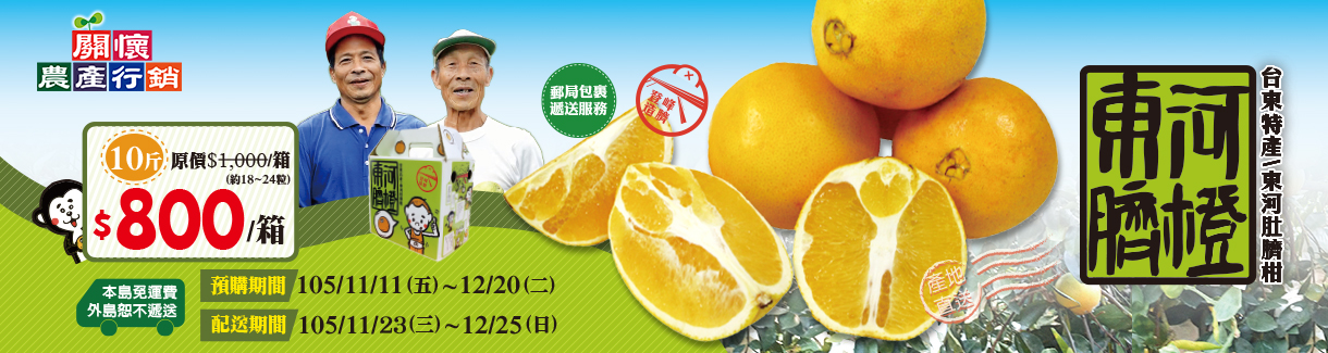 台東東河肚臍柑(臍橙)禮盒