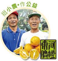 台東東河肚臍柑(臍橙)